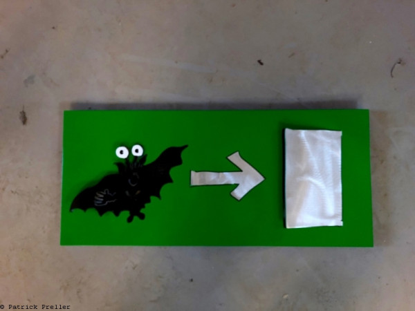 Notausgang für Fledermäuse